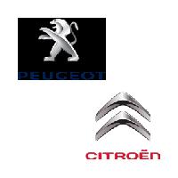 Testere auto Peugeot Citroen